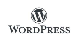 advantage-and-disadvantage-of-wordpress-platform